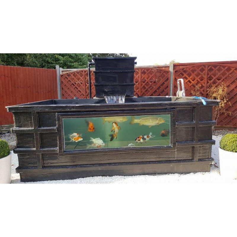 1500 gallon tank with viewing window denby koi ponds for 10 gallon koi tank